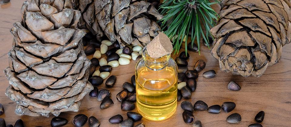 Cederträolja för yoga och meditation